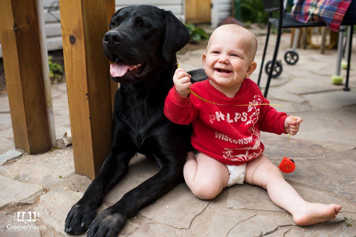 Labrador Baby Portrait Missoula Montana Smile